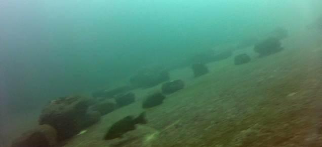 boulders-web